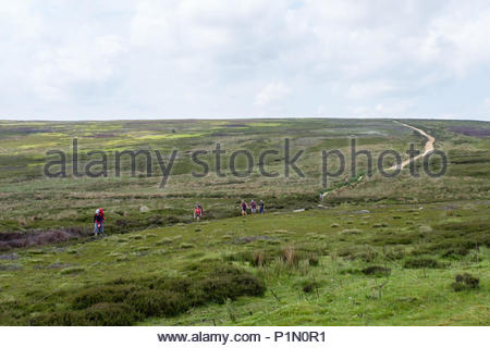 Group of male and female adult walkers at Bloworth Crossing on the Cleveland Way national trail in the North York Moors, North Yorkshire, UK - Stock Image