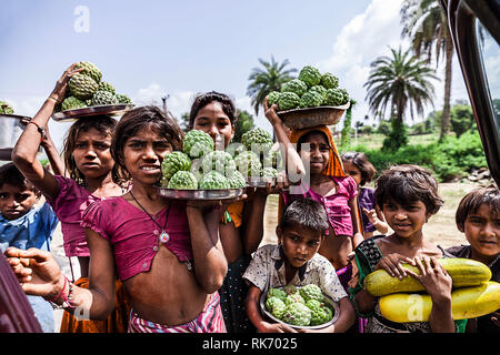 Rajasthani children selling fruits for a living - Stock Image