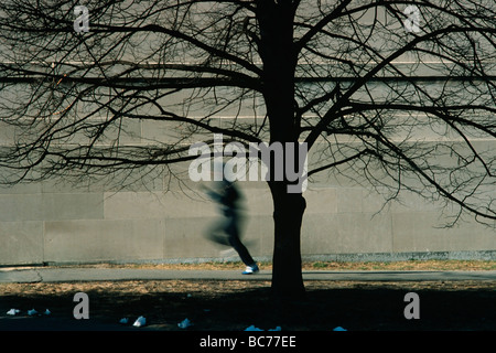 man running with tree in foreground and wall in background - Stock Image