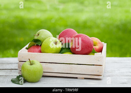 Fresh garden green and red apples in box. On outdoor table with copy space for your text - Stock Image