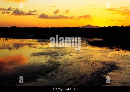 Sunset reflections over Oriklini salt lake, Larnaca, Cyprus - Stock Image