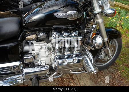 Close up engine of a Honda Valkyrie F6 flat six cylinder motor cycle - Stock Image