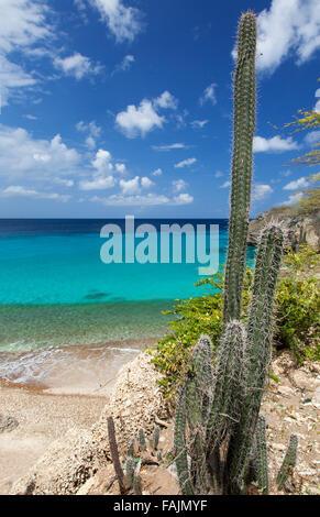 Playa Jeremi on Curacao - Stock Image