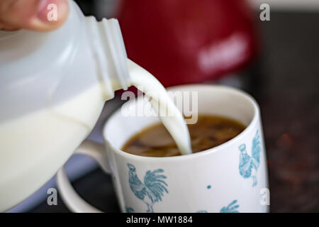 milk and coffee - Stock Image