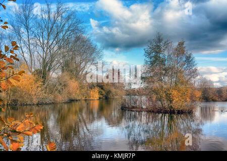 Stockers Lake, Rickmansworth, Hertfordshire, England, UK. Nature reserve and bird sanctuary. A diverse selection - Stock Image