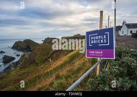 For Sale sign by Purple Bricks in the coastal village of Portknockie, Scotland, UK - Stock Image