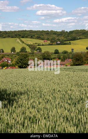 The Chiltern Hills Near Cowroast and Tring, Hertfordshire, UK - Stock Image