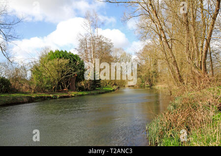 A quiet corner of the River Bure from the riverside path upstream of the village of Coltishall, Norfolk, England, United Kingdom, Europe. - Stock Image