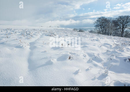 Snow covered Danby Low Moor overlooking Esk Dale in the North York Moors National Park - Stock Image