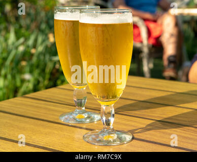 Two cold light unfiltered beer in glasses served on sunny outdoor terrace in garden - Stock Image