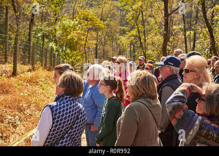 crowds of viewers at an Open House at the Wolf Sanctuary of Pennsylvania in Lancaster County - Stock Image