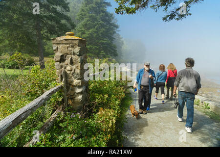 Visitors walking on Shore Path on a misty morning, Bar Harbor, Maine, USA. - Stock Image