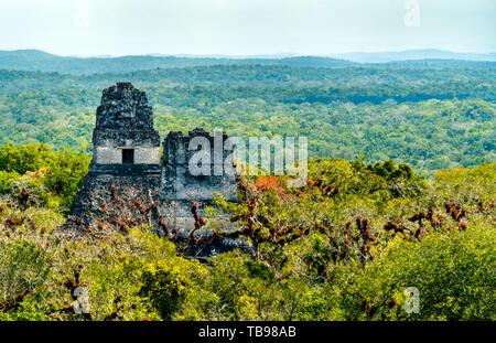 Ancient Mayan ruins at Tikal in Guatemala - Stock Image