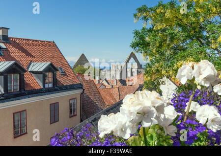 Visby city roof view - Stock Image