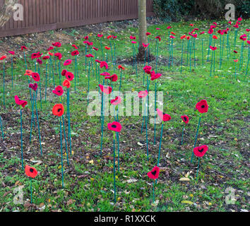 Knitted poppies on canes in ground near Milton war memorial 13/11/2018 - Stock Image