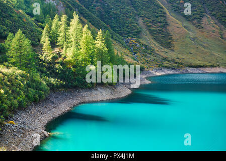 amazing colors of water on the lake with the shadow of the plants reflected - Stock Image