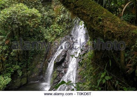 Waterfall in Costa Rica - Stock Image