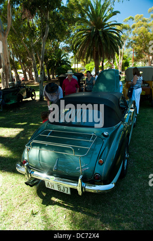 Classic green Austin-Healey 3000 sportscar - Stock Image
