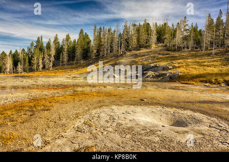 Yellowstone Upper Themal Basin landscape, Wyoming, USA - Stock Image