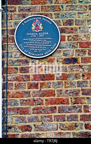 Plaque on Wall of No 5 Ravensworth Terrace, residence of Joshua Alder, Newcastle upon Tyne, England as featured in tv programme a house in time - Stock Image