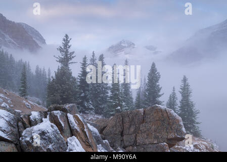 Snow dusted and mist shrouded mountainside near Peyto Lake in the Canadian Rockies, Alberta, Canada. Autumn (September) 2017. - Stock Image