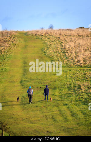 Two people walking dogs up hill in countryside - Stock Image