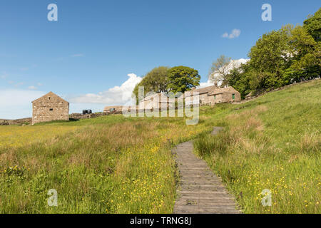 Hannah's Meadow Nature Reserve, Baldersdale, County Durham, UK - Stock Image