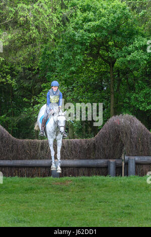 Rockingham Castle grounds, Corby, UK. 19th May, 2017. The horse 'Iggludon Jasmine Tea' ridden by Claudia - Stock Image