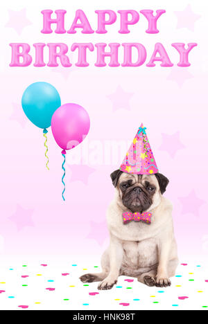 cute grumpy faced pug puppy dog with party hat, balloons, confetti and text happy birthday, on pink background - Stock Image
