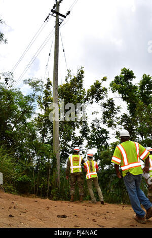 U.S. Army Corps of Engineers Task Force Recovery Commander MAJ Scotty Autin inspects the environmental stabilization work that led to the repaired power pole, Isabela, Puerto Rico, August 31, 2018.     The Corps of Engineers is overseeing the environmental stabilization at 53 sites across the island in order to restore the sites disturbed during the emergency power restoration mission. - Stock Image