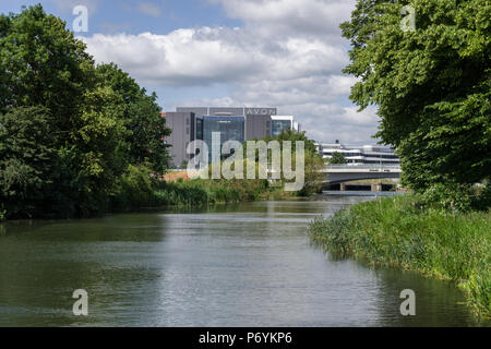 The River Nene flowing through Midsummer Meadow, Northampton, UK; with the headquarters of Avon Cosmetics and the Waterside Campus in the distance. - Stock Image