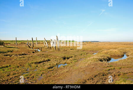 A view of old weathered posts and salt marshes in North Norfolk at Thornham, Norfolk, England, United Kingdom, Europe. - Stock Image