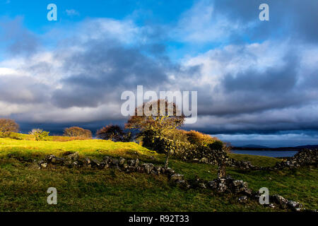Ardara, County Donegal, Ireland. 19th Dec, 2018. A burst of late afternoon sunlight illuminates the landscape on a generally overcast day on the north-west coast. Credit: Richard Wayman/Alamy Live News - Stock Image