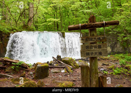Oirase Keiryu Stream in Towada National Park, Japan. The stream walk is 14km long and features a series of currents and waterfalls. In detail is Chosh - Stock Image