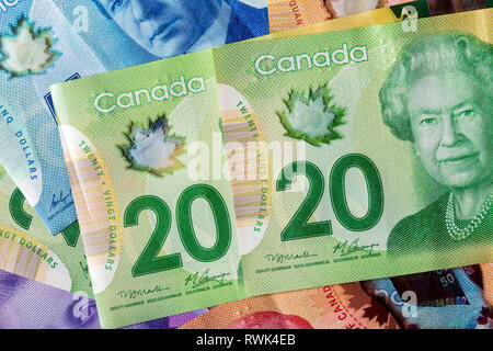 Close-up of two 20 Canadian dollars with other colourful Canadian money in the background - Stock Image