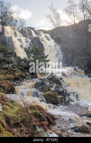 Blea Beck Force waterfall in spate, Teesdale, Co. Durham, England, UK - Stock Image