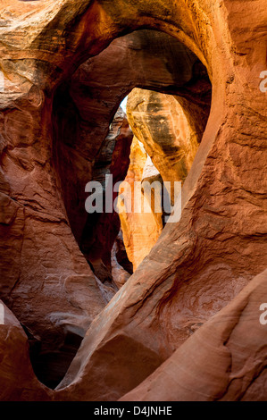 Arch inside Peek-A-Boo Slot Canyon at Hole in a Rock Road in Grand Staircase National Monument, Utah, USA - Stock Image
