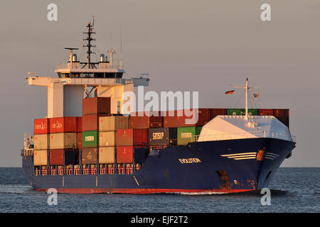 Containerfeeder Evolution in evening sun - Stock Image