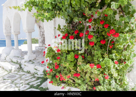 Typical Street with Flowers Paros Greece - Stock Image