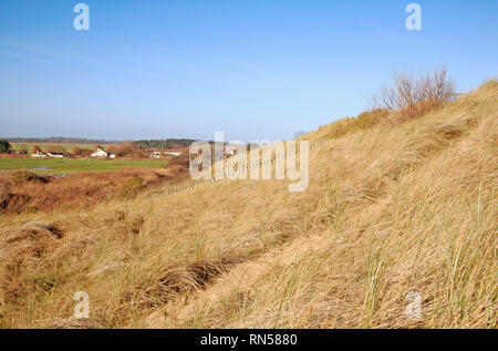 A view of low lying land to the landward of coastal sand dunes on the Norfolk coast at Sea Palling, Norfolk, England, United Kingdom, Europe. - Stock Image