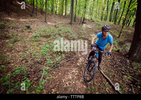Male athlete cycling in forest - Stock Image