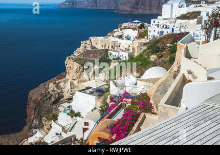 Oia Village, Santorini Cyclade islands, Greece. Beautiful view of the town with white buildings, blue church's roofs and many colored flowers. - Stock Image