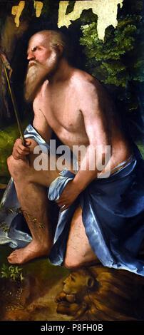 San Girolamo - St. Jerome by  Altobello Melone 1480-1523 , Italian Italy - Stock Image