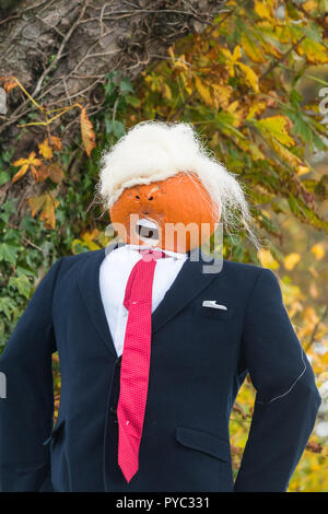 Donald Trump pumpkin, Arnprior, Scotland, UK - Stock Image