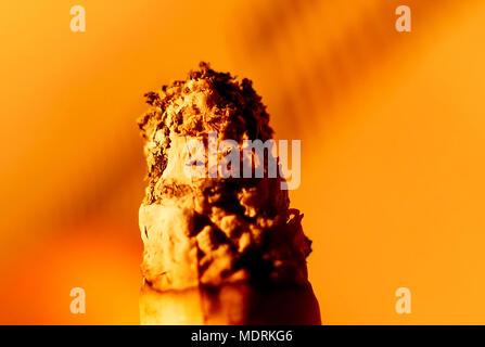 One burinig cigarette macro shot on isolated background - Stock Image