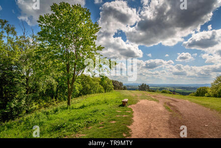 Natural beauty of The Clent Hills, Worcestershire, England - Stock Image