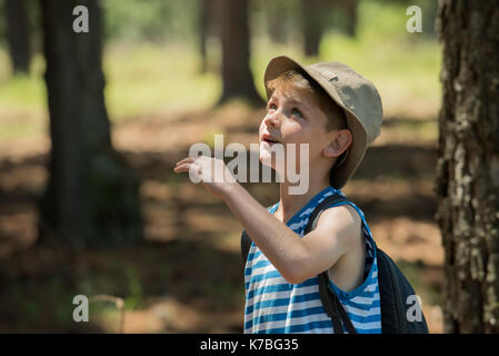Boy looking up in awe outdoors - Stock Image