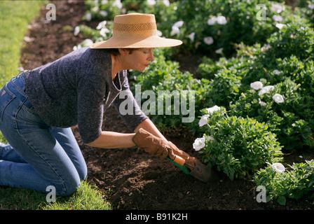 Woman gardening - Stock Image