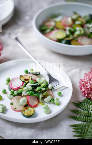 Fresh garden salad with broad beans, green peas, radishes and courgette - Stock Image