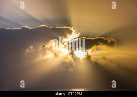 The sun beaming out behind a cloud - Stock Image